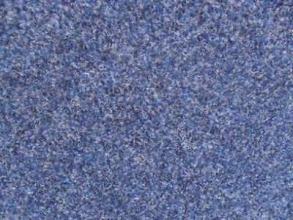 Carpet Tiles Primevera Dark Blue 8m2 Job Lot: £60
