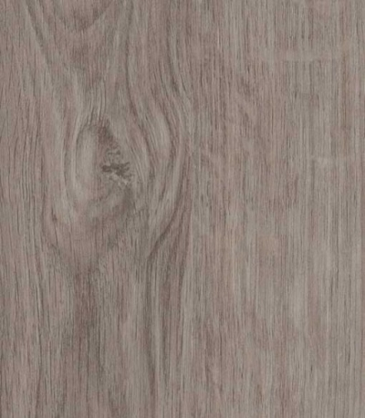 Exclusive Collection: Winter Oak: £24.99m2